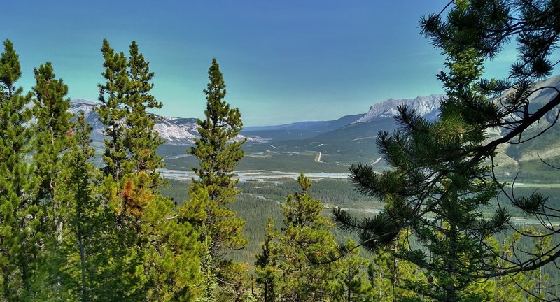 The Athabasca River below in the distance, with The Yellowhead Highway (Hwy 16) on the other side next to the river, heading northeast, is seen through the trees from Devona Lookout. Roche Miette (center right) stands guard over this valley.