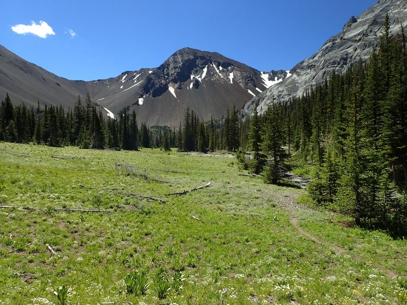 Looking south along Thorp Creek meadow toward the Hurwal Divide.