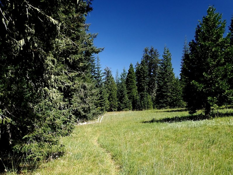 The trail crosses a meadow on the edge of the cliff.