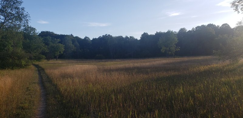 Trail pic.