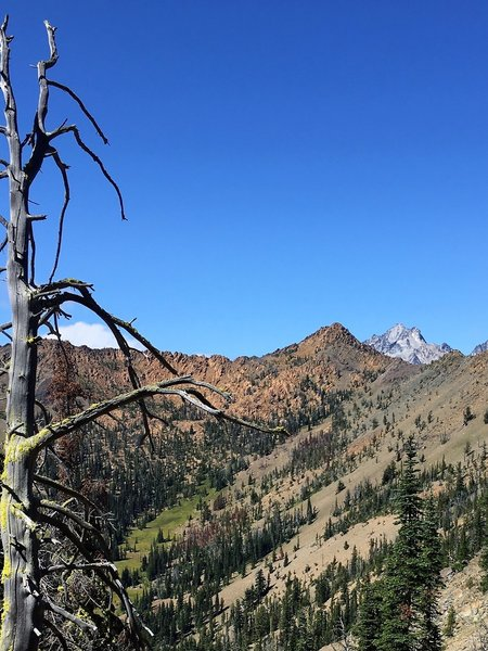 Looking across the Bean Creek basin, with Mt. Stuart behind Bean Peak.