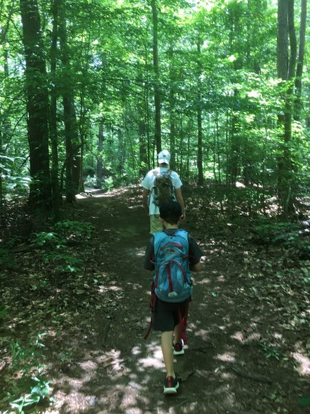 The kids enjoyed this trail as well.