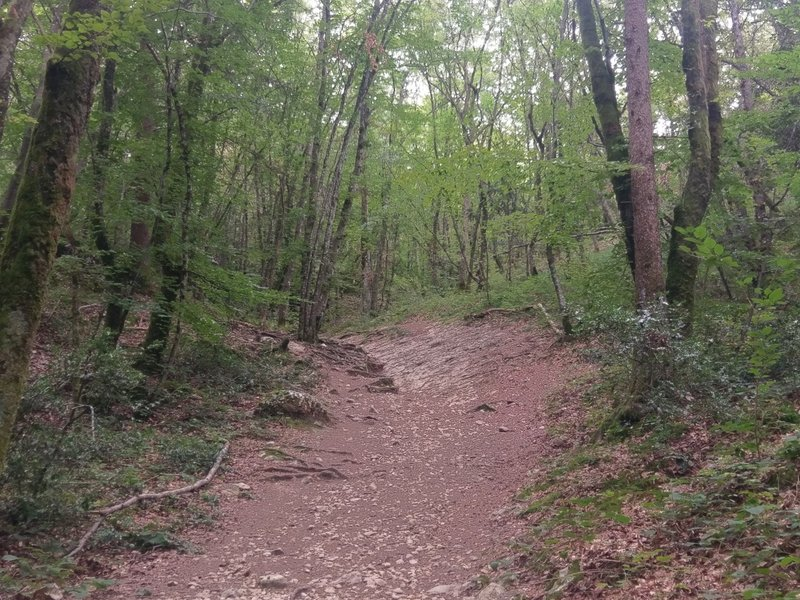 Trail surface becomes slabby rock ledges