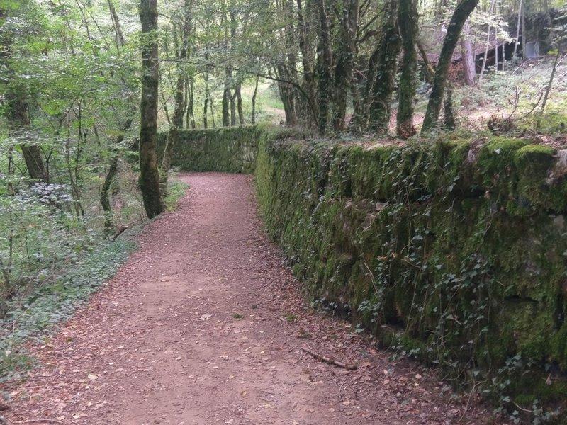 Beautiful moss-covered stone wall