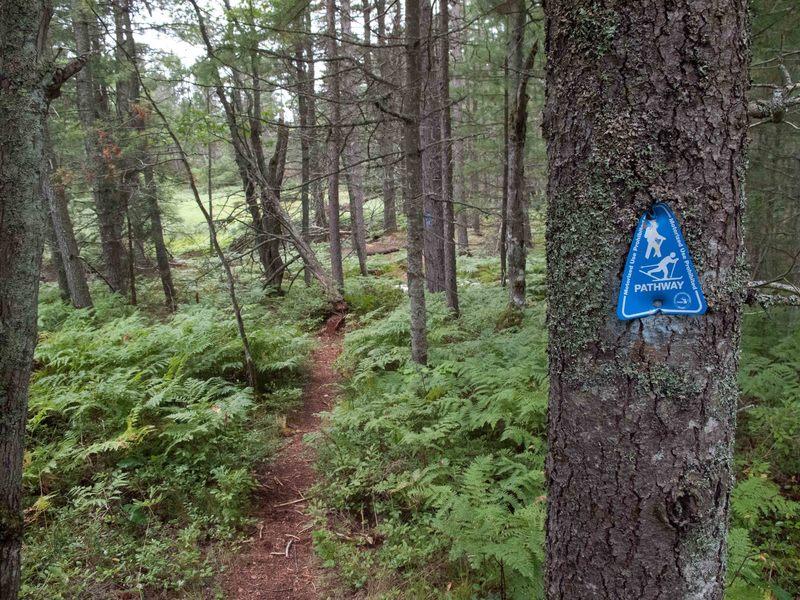 Trail Markings