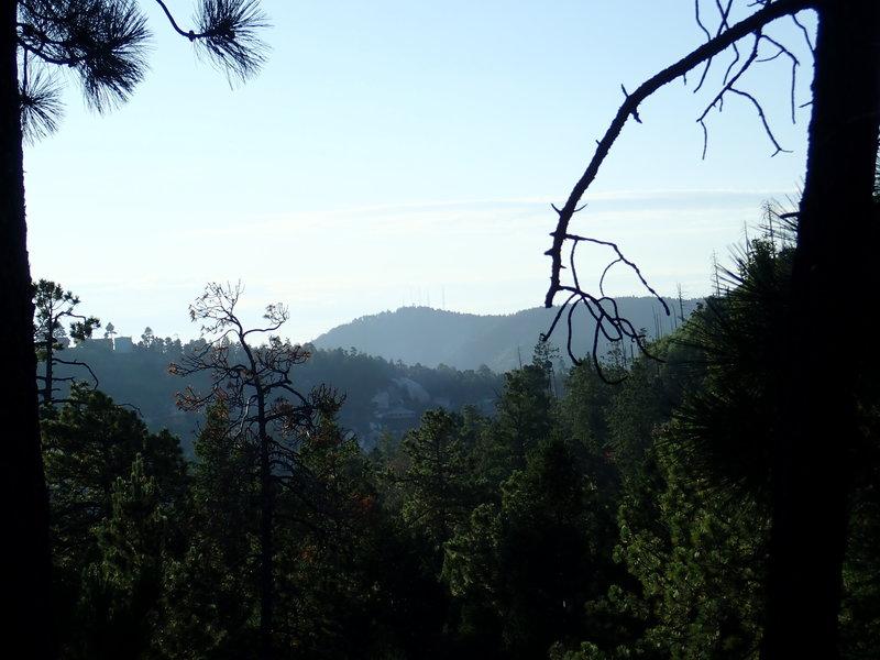 View of Radio Ridge from the beginning of Red Ridge trail #2 08/30/19