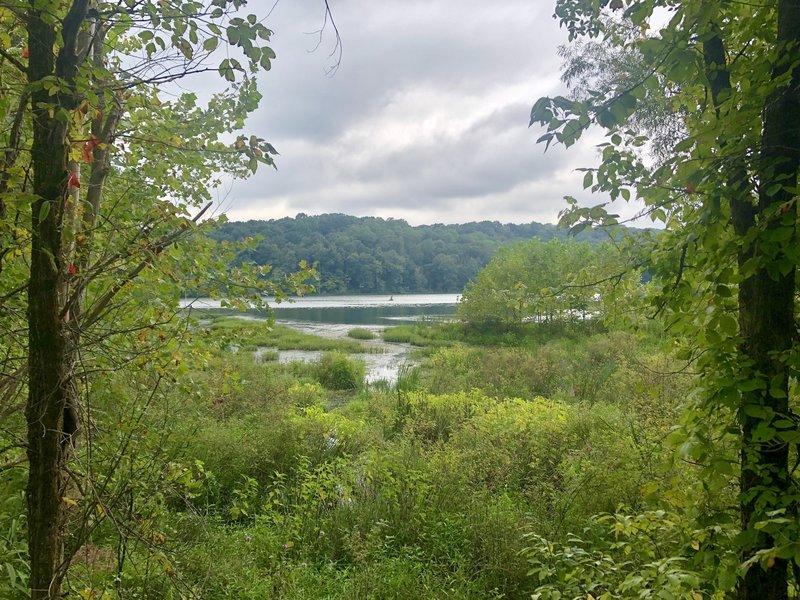 Lake Yellowwood in the summer.