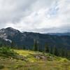 Alpine goodness.