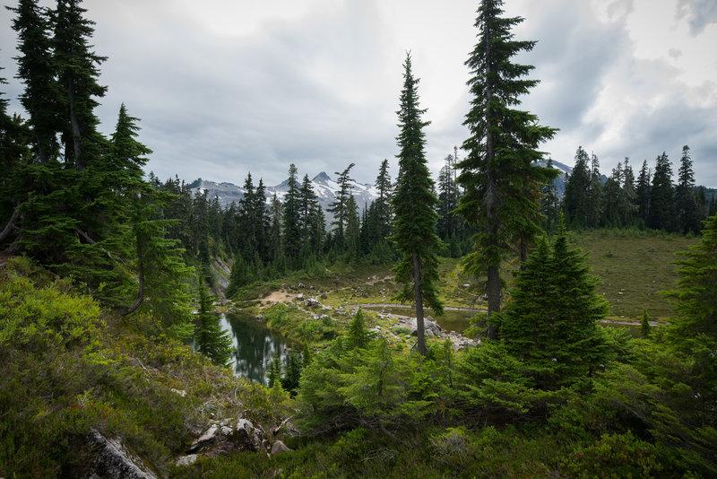 Mazama Lake peaks through the trees.