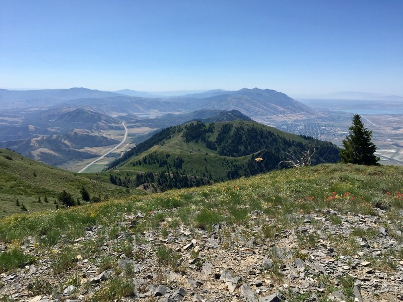 The view south from the summit of Box Elder Peak.