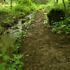 The Hidden Waterfall Trail.