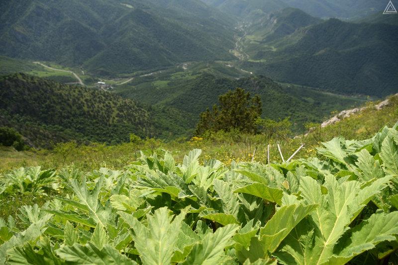 The Apakeqar Trail