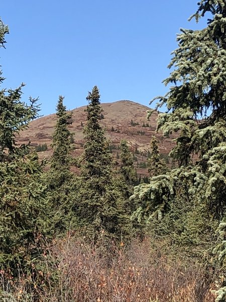 Wickersham Dome South Ridge