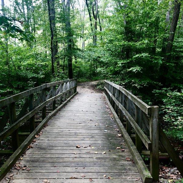 Wetlands Trail footbridge.