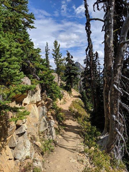 Maple Pass Trail