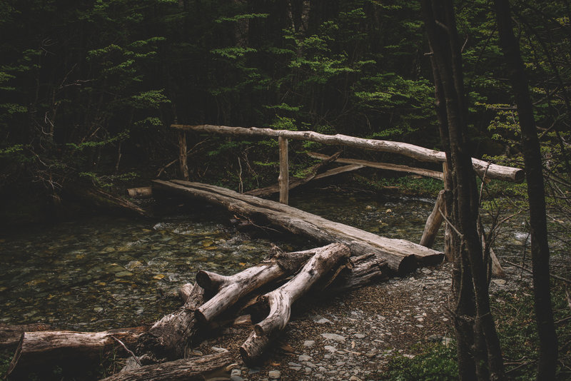 One of the many makeshift bridges along the trail.