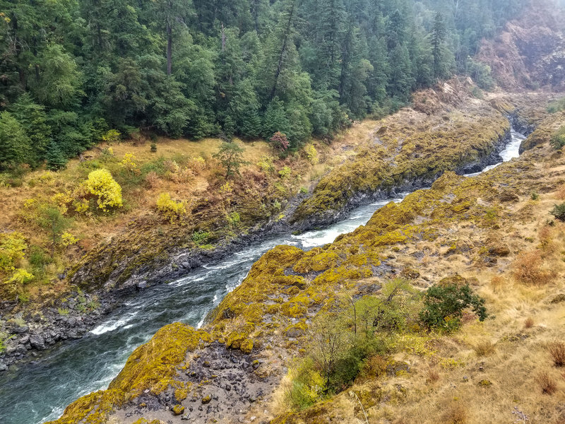 A more swiftly flowing stretch of the Rogue River between the Narrows and the Coffeepot.