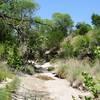 Balcones Canyonlands National Wildlife Refuge