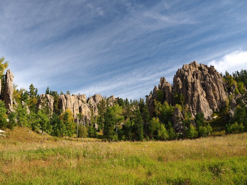 A meadow along the Little Devils Tower Trail #4.