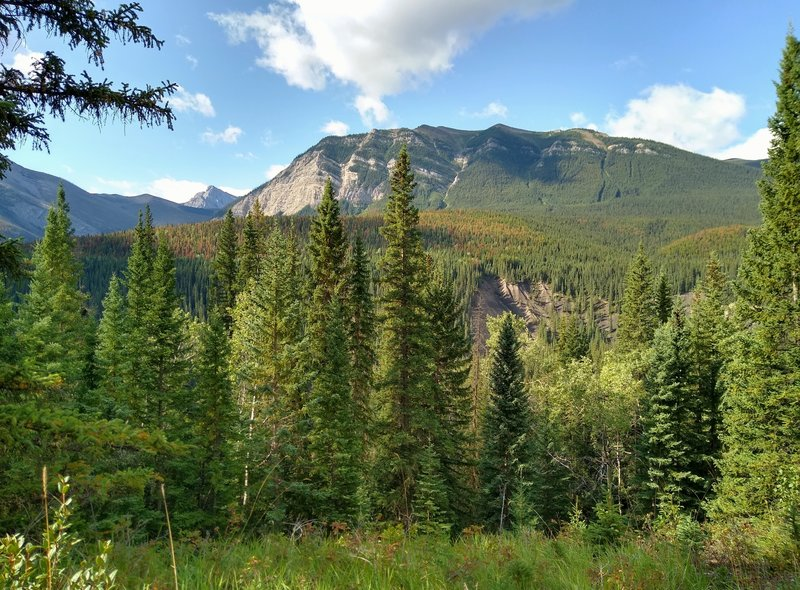 Mountains come into view along the forested North Boundary Trail, as the trail climbs.
