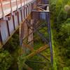 Foliage creeping up the bridge's trestles