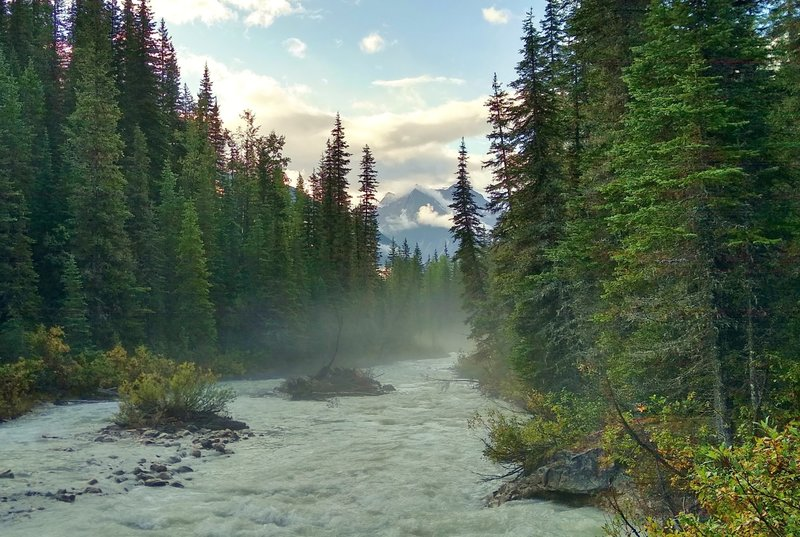 Morning mist and mountains along the Blaeberry River, hiking the David Thompson Heritage Trail.