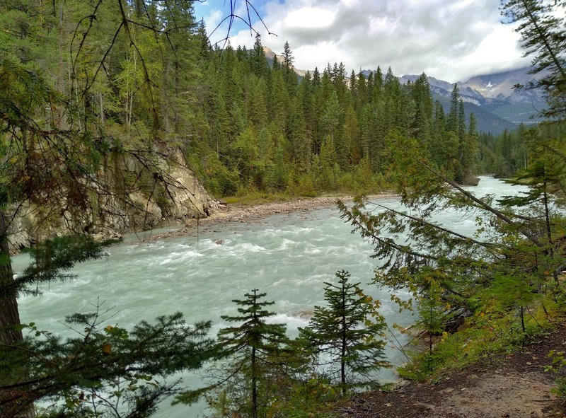 Blaeberry River, looking upstream, below Thompson Falls Trail.