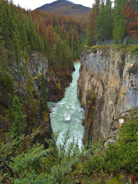 The Sunwapta River is in a gorge below Sunwapta Falls, on its way to Lower Sunwapta Falls.