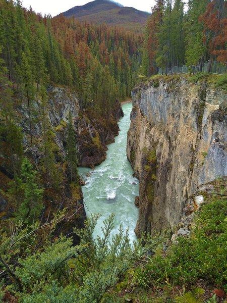 The Sunwapta River is in a gorge below Sunwapta Falls, on its way to Lower Sunwapta Falls.