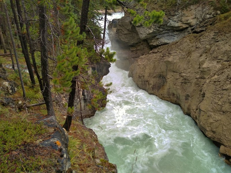The top falls of Lower Sunwapta Falls plunges into a gorge leading to the next major drop.