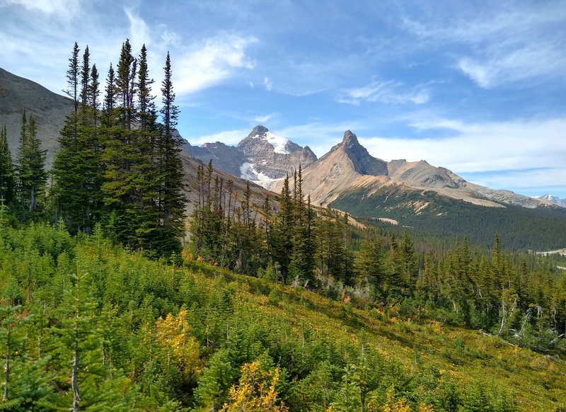Mount Athabasca (left center) and Hilda Peak (right center) come into view as Parker Ridge Trail climbs.