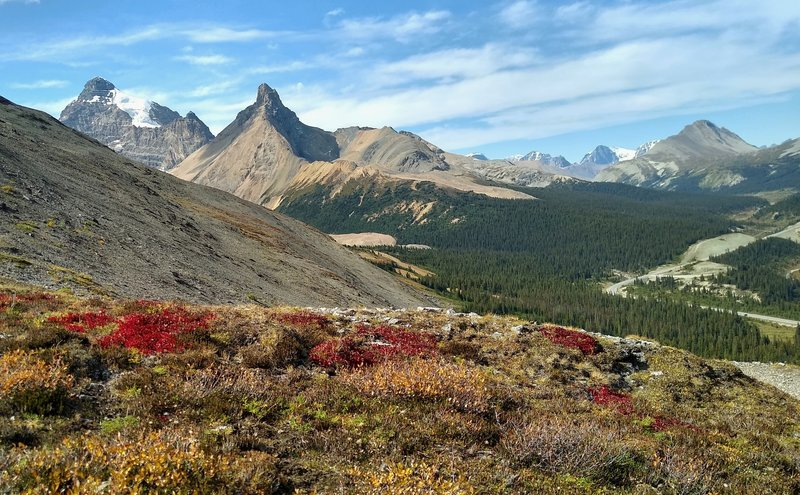Mount Athabasca (left), Hilda Peak (center left), and Wilcox Peak (right) are seen to the west from Parker Ridge Trail.