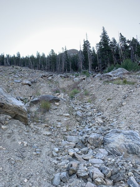 This massive landslide was the result of flooding rains in the summer of 2013. Now it is a natural restoration area.