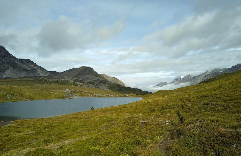 At Maligne Pass, a small lake is passed by Maligne Pass Trail.
