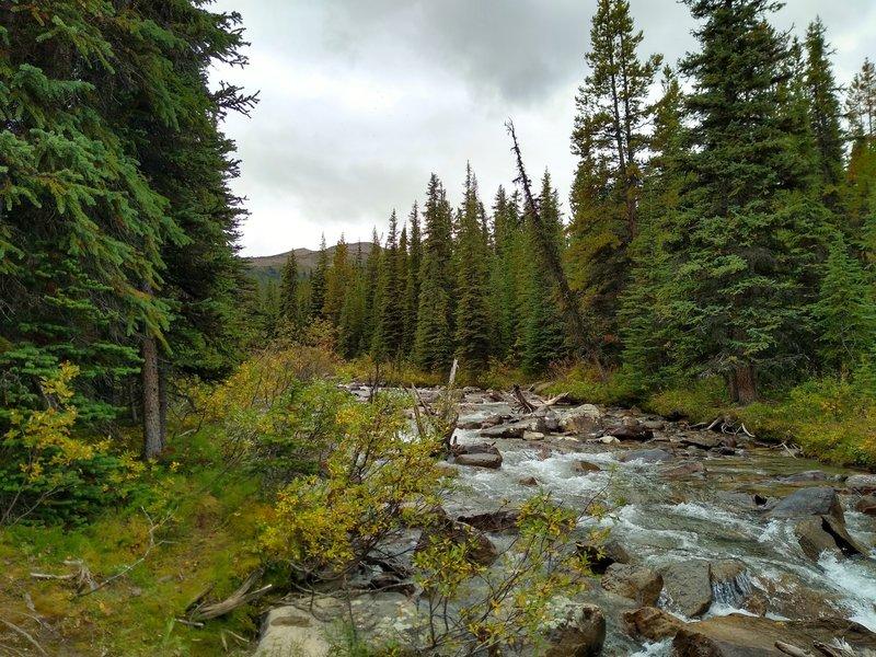 Evelyn Creek, near Maligne Lake, is crossed by Skyline Trail.
