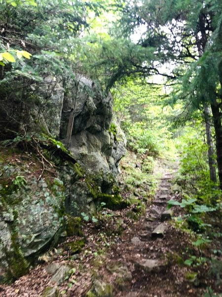 A nice rocky face along the Locator Lake trail just before the ridge.