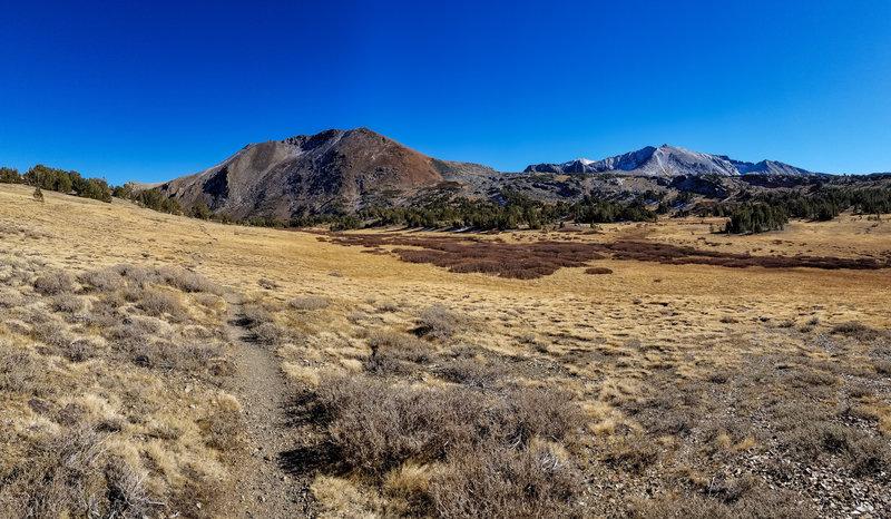 Approaching Mono Pass, looking towards Mount Lewis