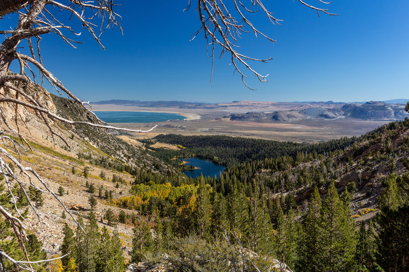 Walker Lake and Mono Lake