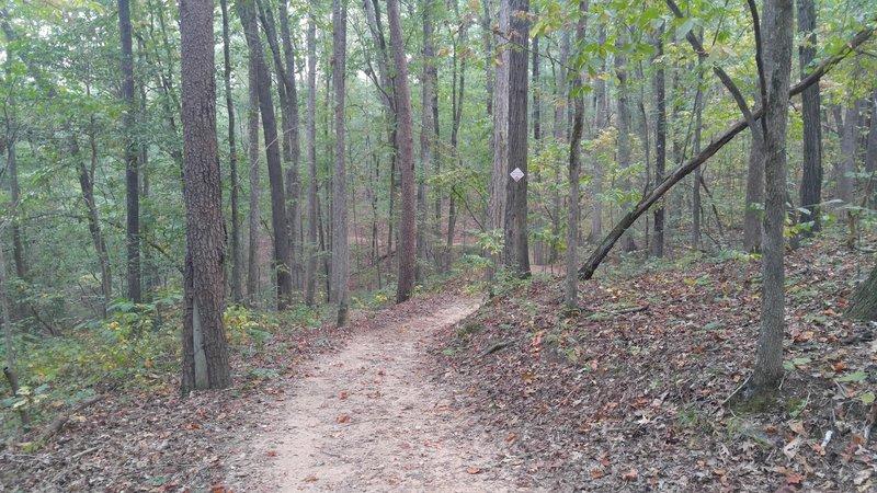 Prison Camp Trail