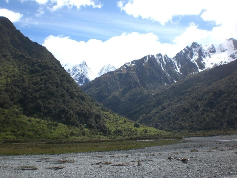 The Copland River and Mount Cook