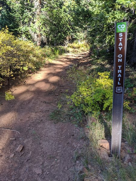 Marker about 200-yards down un-marker link trail