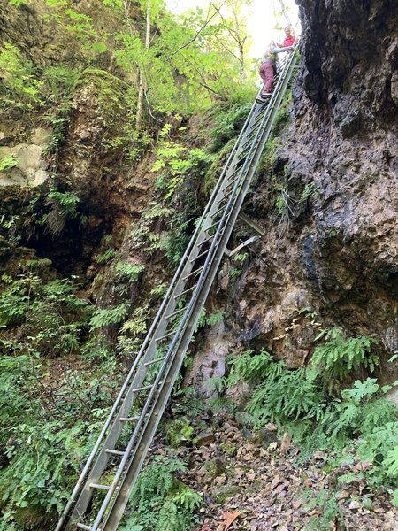 The 30ft ladder on the trail.