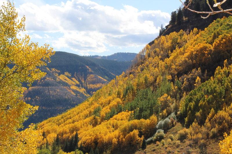Unbelievable fall colors