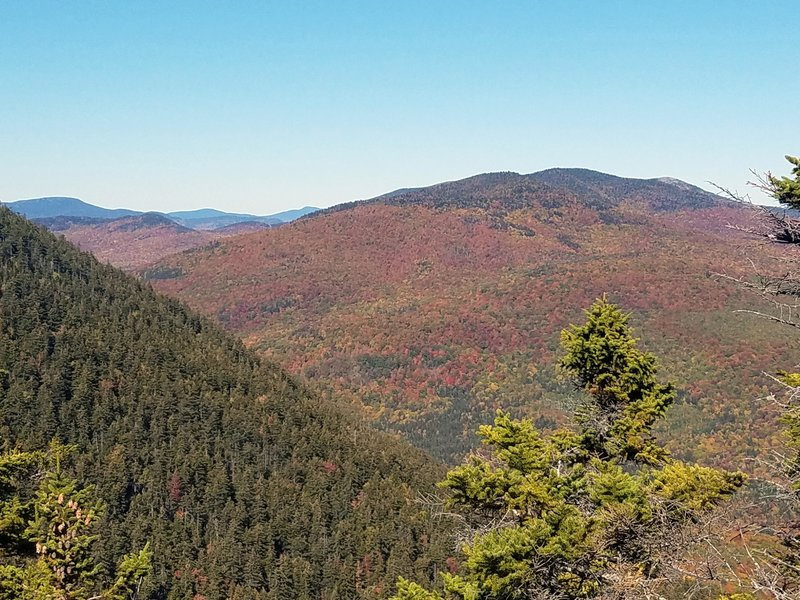 Foliage view from South Double Head 10/5/2019