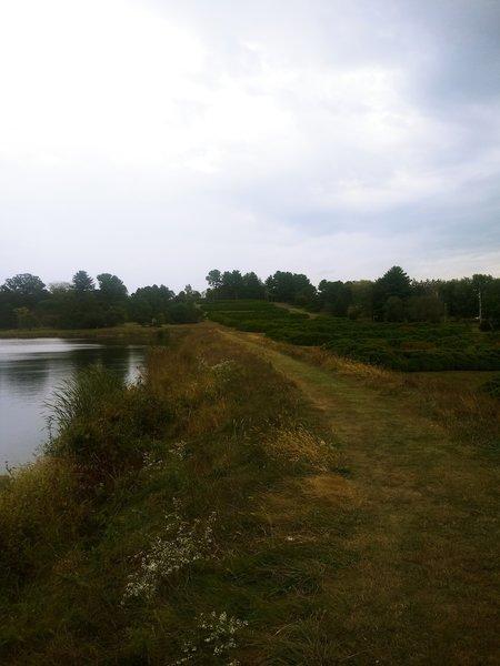 Island Lake at Dawes Arboretum