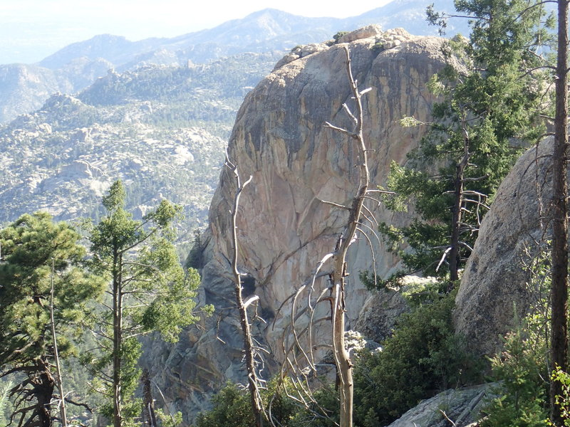 The view from near the top of the Lemmon Rock #12 trail