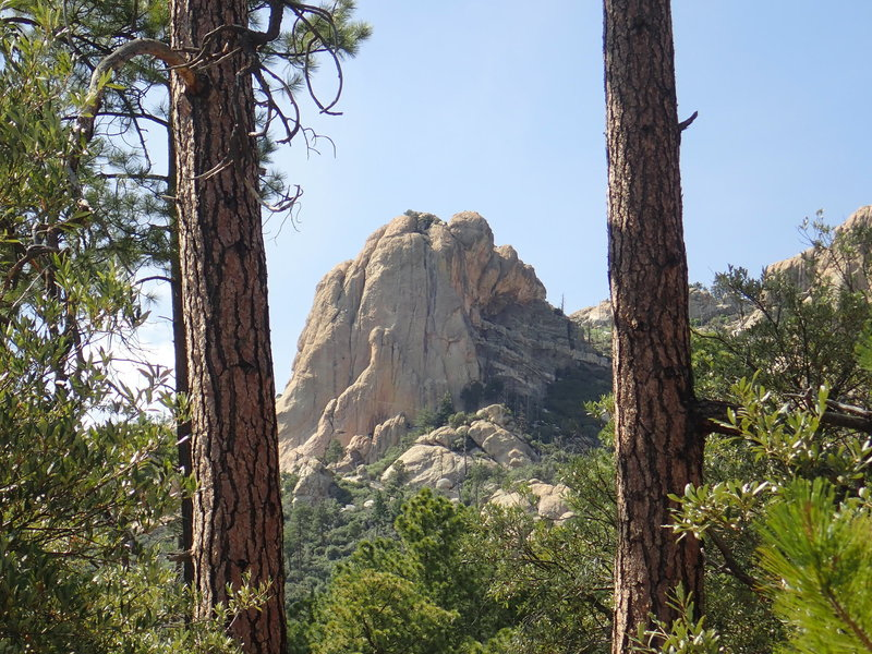A view from the bottom of the Lemmon Rock #12 trail near the junction of #44 and #12