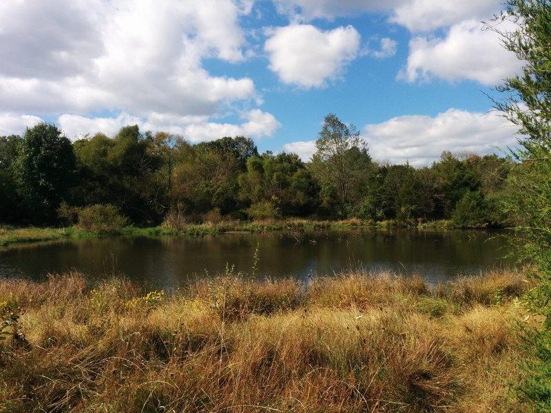 Pond along Potomac Heritage Trail in Bles Park