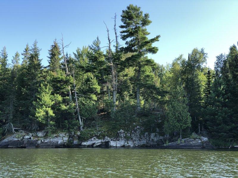 Another shoreline spot on Kabetogama lake.