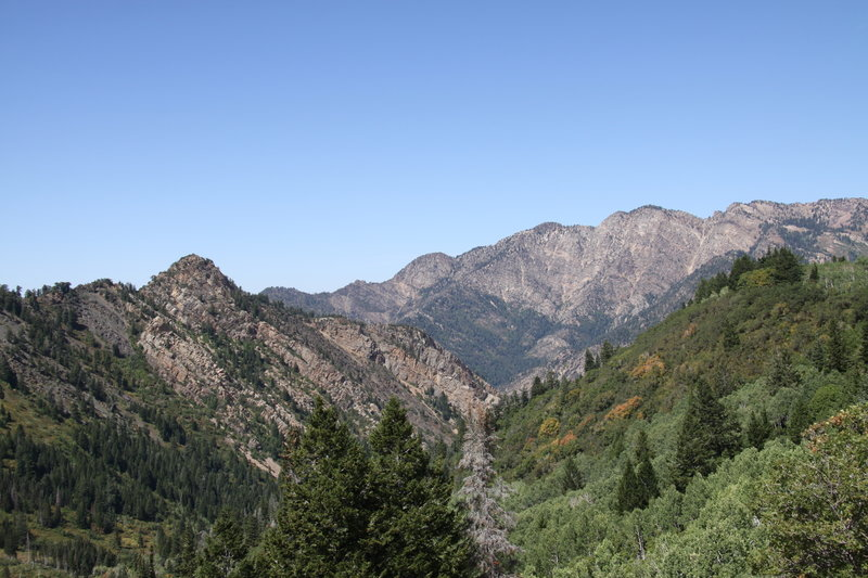 View of the canyon.